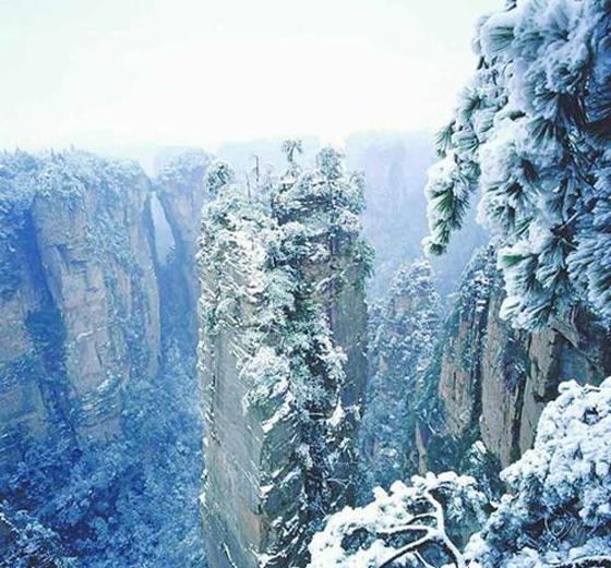 天子山壮观雪景.jpg